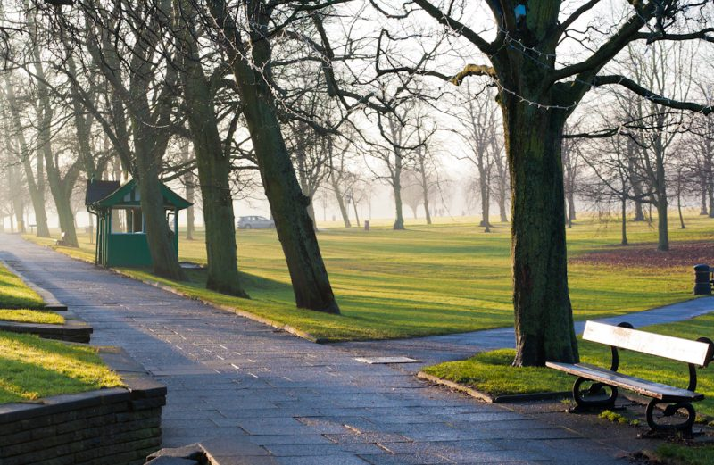 Harrogate, Stray, Yorkshire