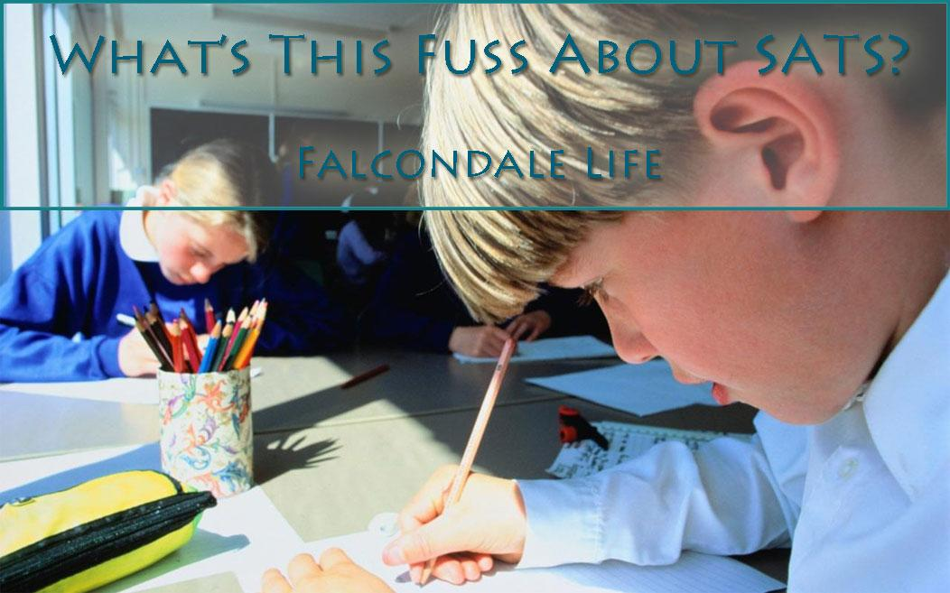 What's this fuss about SATS on falcondalelife blog. SPaG testing has become quite extreme. Does it matter?