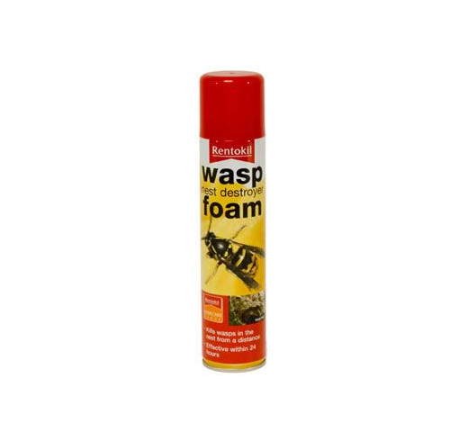 Foam Wasp Nest Destroyer from Homebase