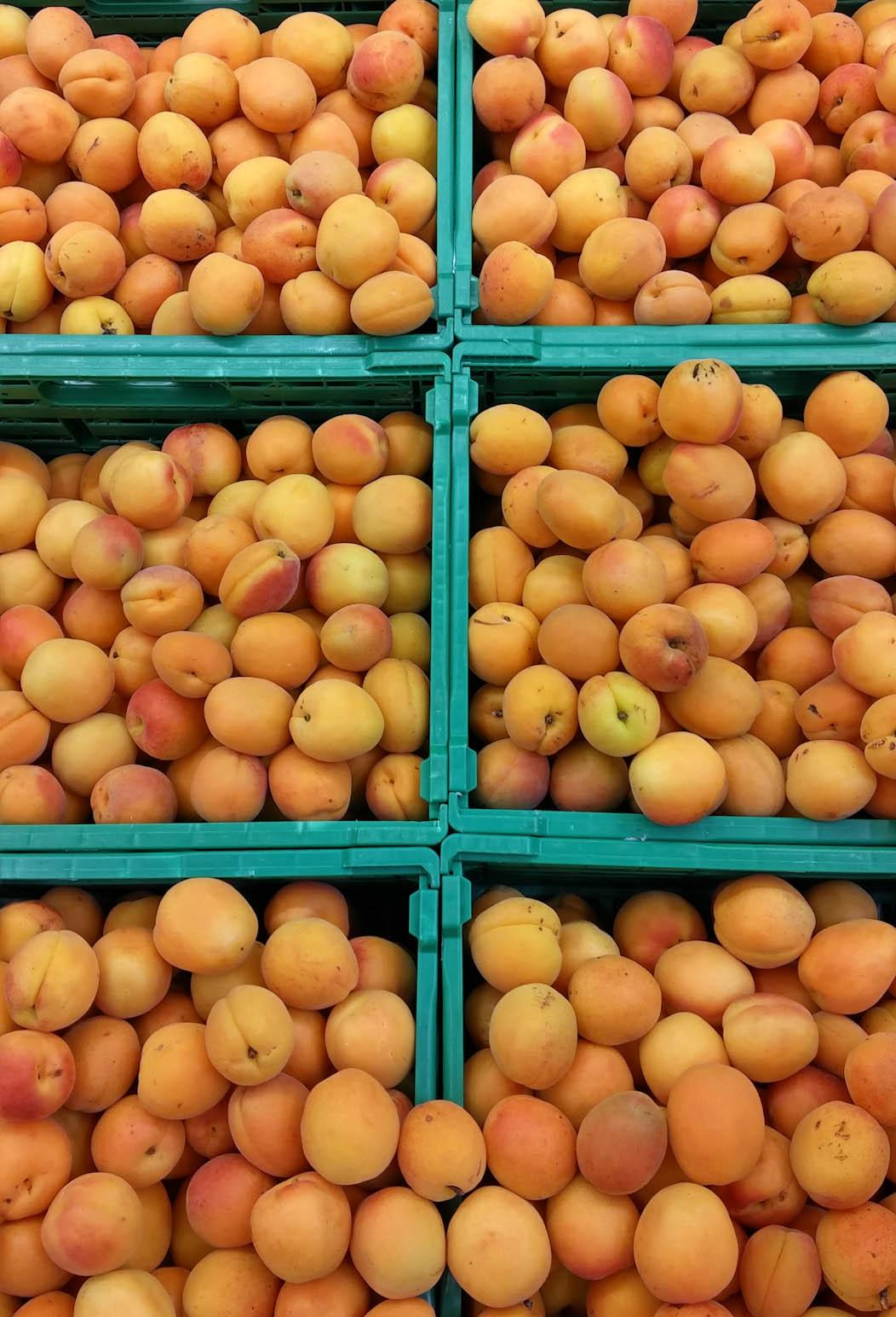 Apricots in a French supermarket on FalcondaleLife blog
