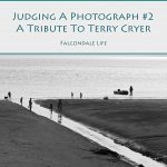 Judging a photograph with a tribute to Terry Cryer on Falcondale Life blog. Monochrome photography competition.