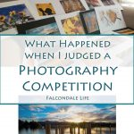 What happened when I judged a photography competition on Falcondale Life