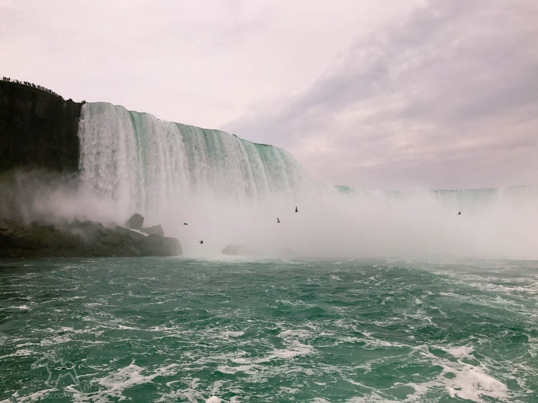 Niagara Falls Pic of the Week on Falcondale Life blog. Shot from the boat ride on the splash-proof iPhone 7 plus.