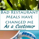 How bad restaurant meals have changed me as a customer, on Falcondale Life blog. Complaining about a meal in a restaurant seems hard but lately I've had to get used to it. It's worth it. Now I think restaurant reviewers are brave people!