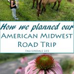 How we planned our American Midwest road trip on Falcondale Life. A route from Minneapolis to Nebraska and Iowa taking in the Trout Trail cycle route and the Spam Museum. A more unusual American holiday for a family.
