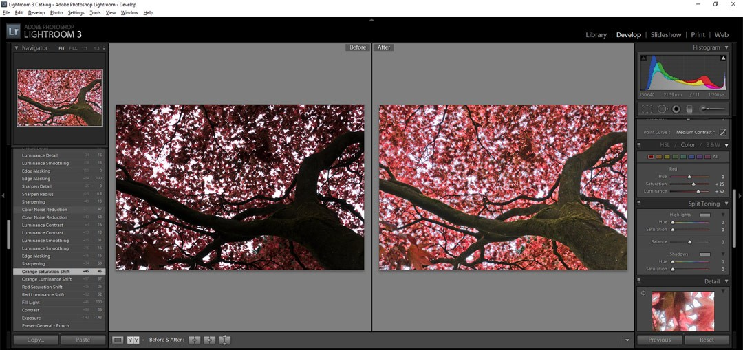 Why shoot RAW and why edit? Lightroom Basics on Falcondale Life blog. IF you have all the gear but no idea, or if you aren't really sure what effect you are having on your photos when you edit them, start here. Lightroom 3 screenshot