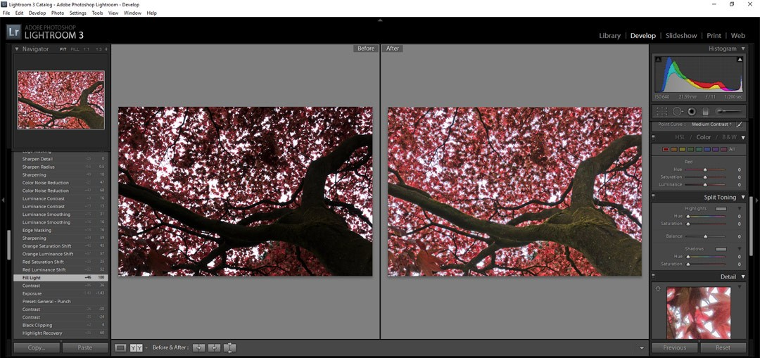 Why shoot RAW and why edit? Lightroom Basics on Falcondale Life blog. IF you have all the gear but no idea, or if you aren't really sure what effect you are having on your photos when you edit them, start here. Lightroom 3 screenshot.