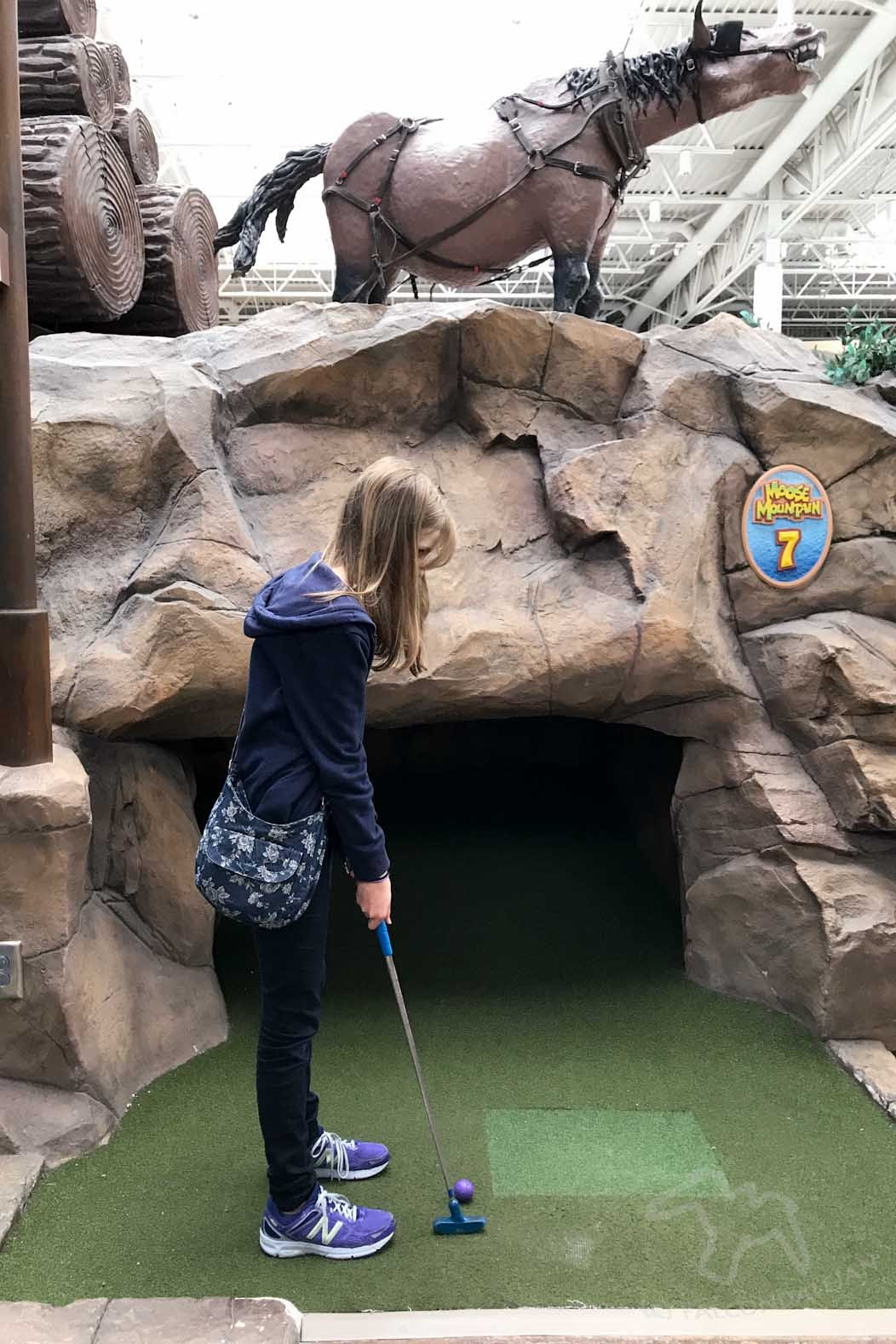 Mall of America, Minneapolis: Destination Thrill on FalcondaleLife blog. The biggest shopping mall in America also has a theme park and many other thrilling attractions to make it a tourist destination in its own right. Moose Mountain adventure golf.
