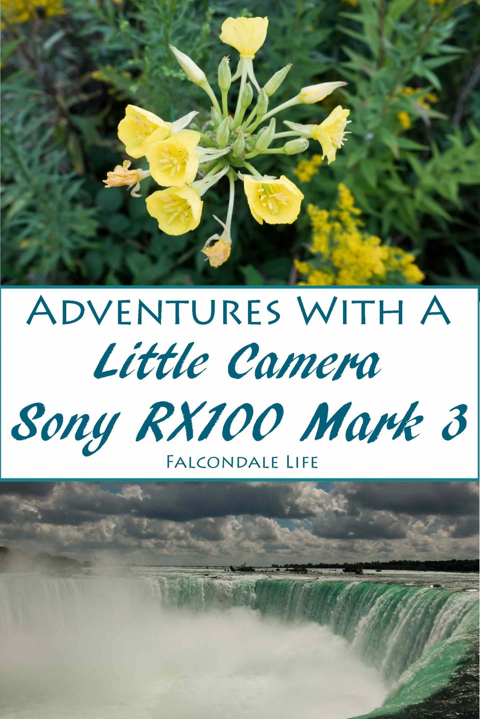 Adventures with a Little Camera – the Sony RX100iii