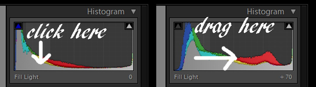 Why shoot RAW and why edit? Lightroom Basics on Falcondale Life blog. IF you have all the gear but no idea, or if you aren't really sure what effect you are having on your photos when you edit them, start here.
