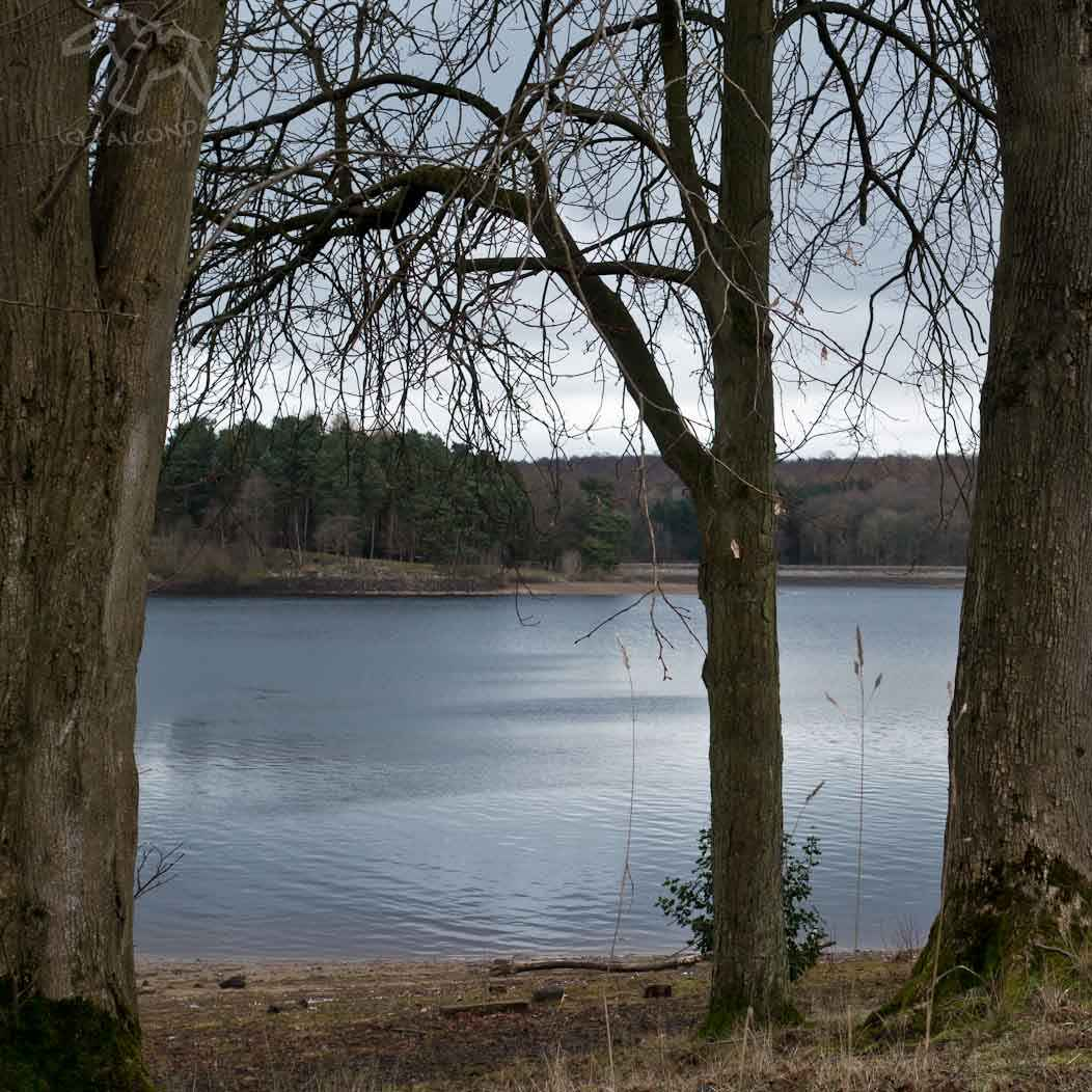 Winter by the Water, Pic of the week on Falcondale Life blog. Winter photography at Swinsty reservior in the Yorkshire Dales. Winter photography can be difficult so share some ideas and tips.
