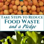 Take Steps to Reduce Food Waste and a Pledge on Falcondale Life blog. Food gets wasted in homes and communities but new cafes are popping up to make use of the food and prevent it going to landfill. Food bloggers can now make a Pledge called No Waste Within to promise not to waste food when producing website content.