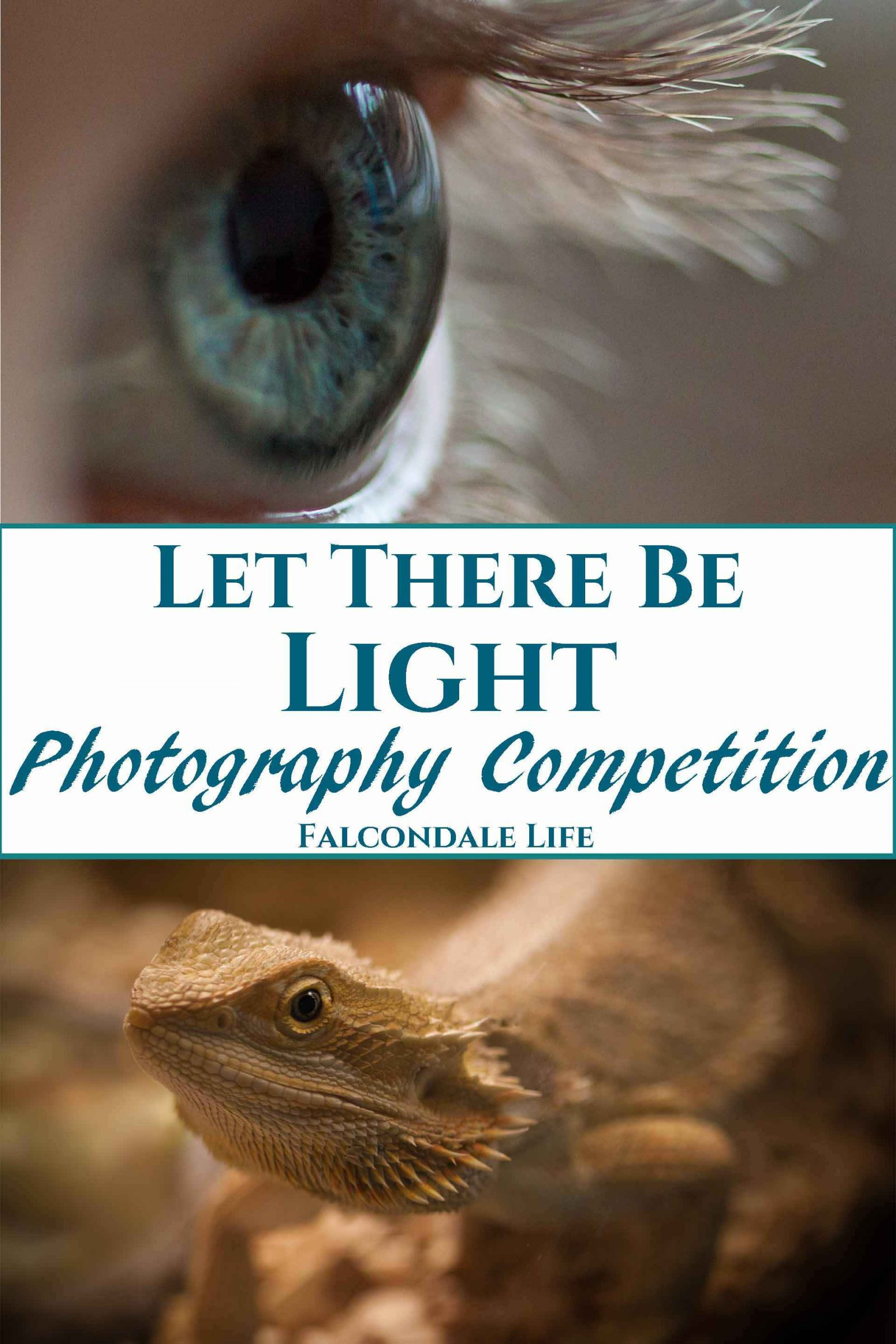 Close up of a girl's eye with eyelashes backlit. Portrait of a bearded dragon in artificial light. Let there be Light Photography Competition entry on Falcondale Life blog. Win with Urban Cottage Industries by showcasing one natural light image and one artificial light image. #Lettherebelight