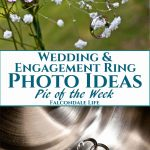 Wedding and engagement rings on flowers and in a chrome ice bucket. Wedding and Engagement Ring Photo Ideas - Pic of the Week on Falcondale Life blog. Wedding and Engagement ring photo ideas. Set up a creative ring photo to remember a special or romantic moment, take a record of your rings but make sure they don't roll away! Tips from a wedding photographer for great shot ideas.