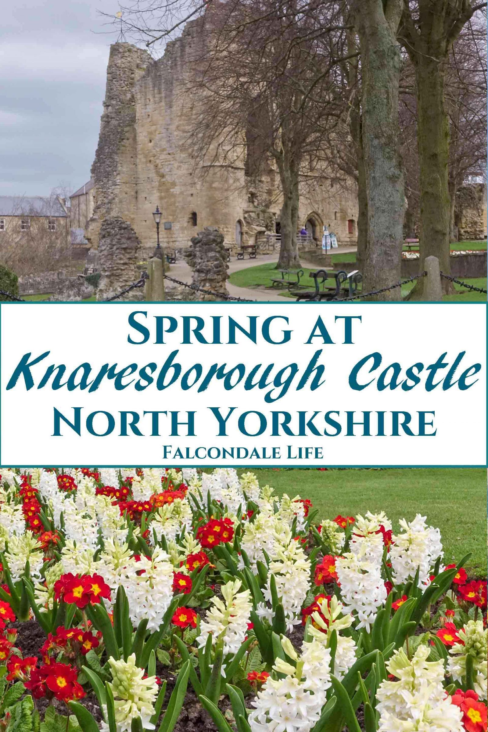 Spring at Knaresborough Castle North Yorkshire on Falcondale Life blog. This charming North Yorkshire town ha a castle, gorge views and lots to explore. Get a discount on accommodation in time for the Great Knaresborough Bed Race, one of the most eccentric English sporting events of the year.