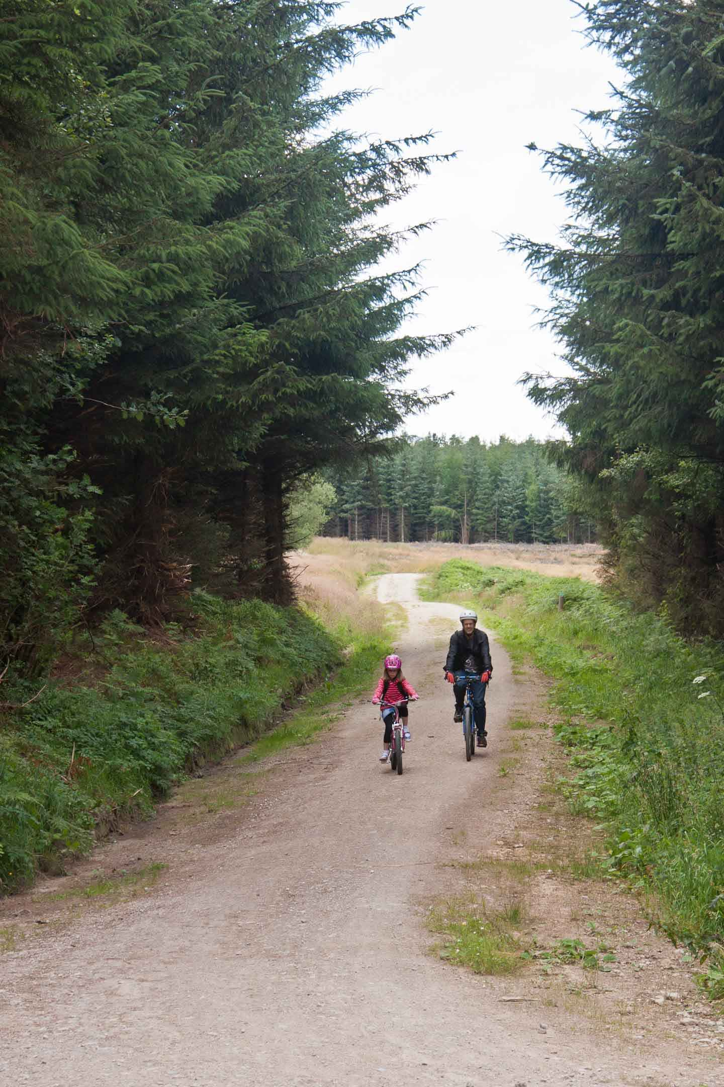 Mountain Biking for beginners; Favourite Family Cycle Routes on Falcondale Life blog. Mountain biking beginner tips to suit families and friends. Find UK MTB trails and off road cycling experiences in forests or bike skills areas. Get your bike ready, enjoy nature all around and start learning how to go mountain biking from scratch. Image Description: Father and child cycling on a forest trail.