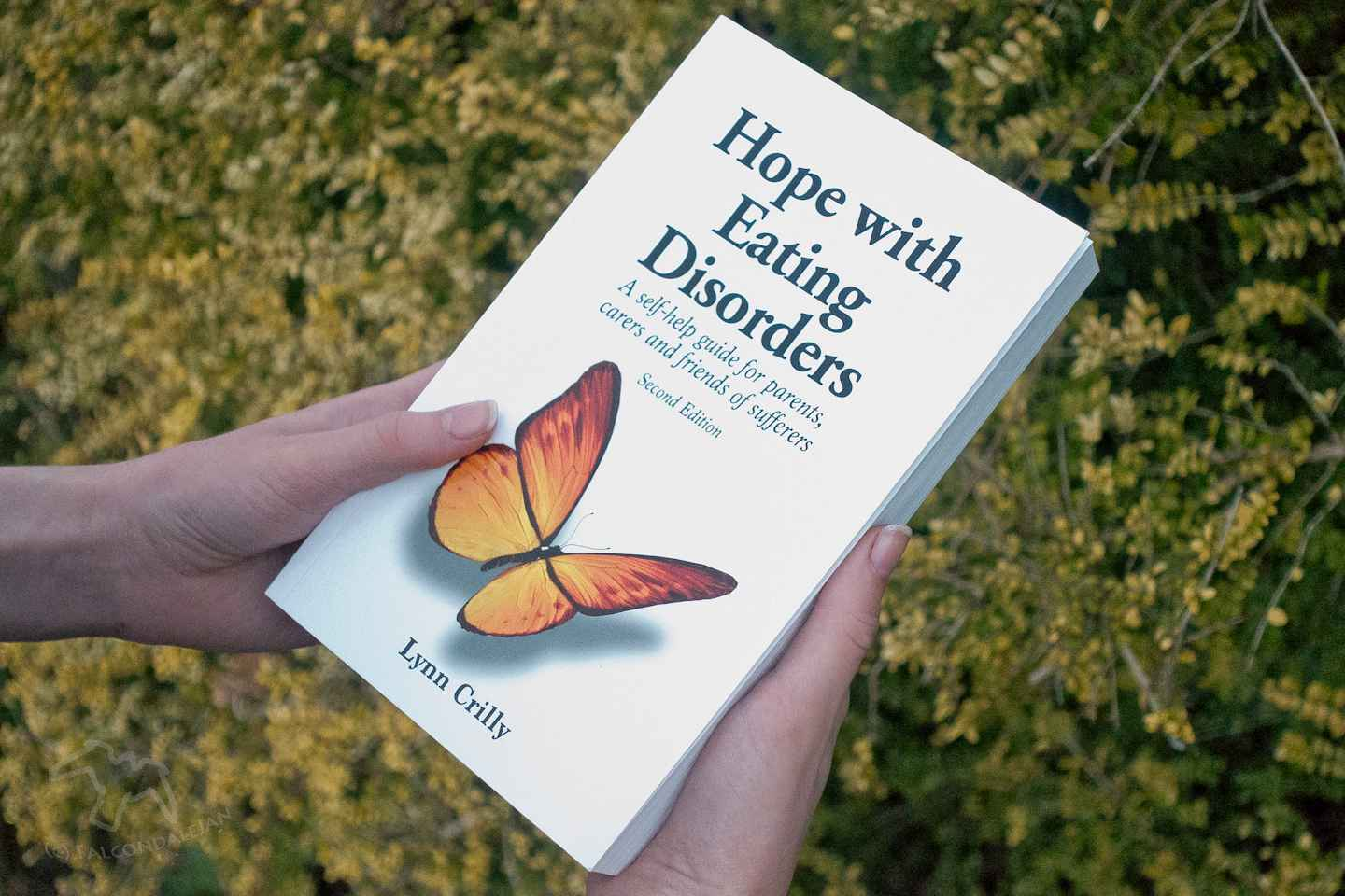 """An in depth review of Lynn Crilly's book """"Hope with Eating Disorders"""" by the parent and carer of an ED sufferer. A practical book on these mental illnesses. Hope with Eating Disorders book review on Falcondale Life blog. Image description: hands holding the book, Hope with Eating Disorders."""
