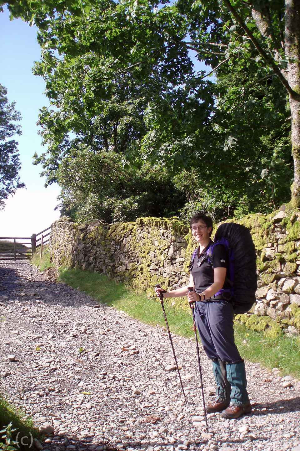 A review of walking poles for hiking with arthritis or joint pain. How to use walking poles and how could walking poles help on a trek or ramble. On Falcondale Life blog. Image description: woman with backpack on a path using a pair of walking poles.